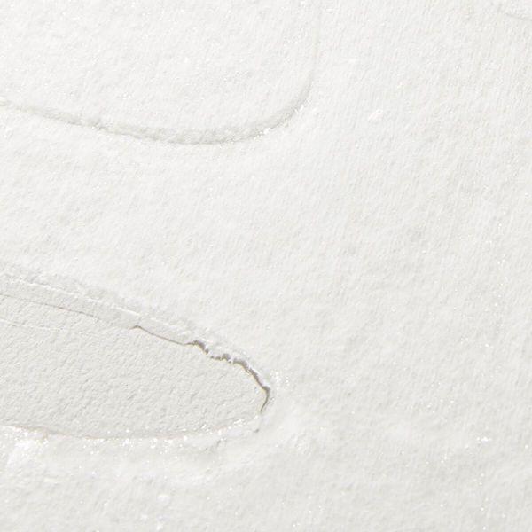 VT cosmetics(ブイティコスメティクス)『シカ3ステップマスク』をご紹介に関する画像11