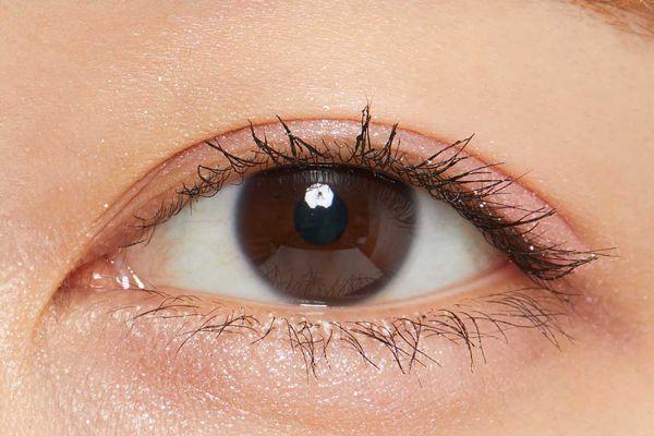 3Dラメが目元に輝きをプラス♡ シャドーカスタマイズ(フローティング)の花言葉をご紹介に関する画像25