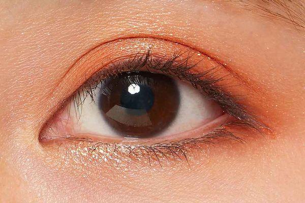 オレンジブラウンのカラーがおしゃれな、ZEESEA(ズーシー)『エジプトシリーズ アイシャドウパレット 04 魅惑の蛇』の使用感をレポ!に関する画像20