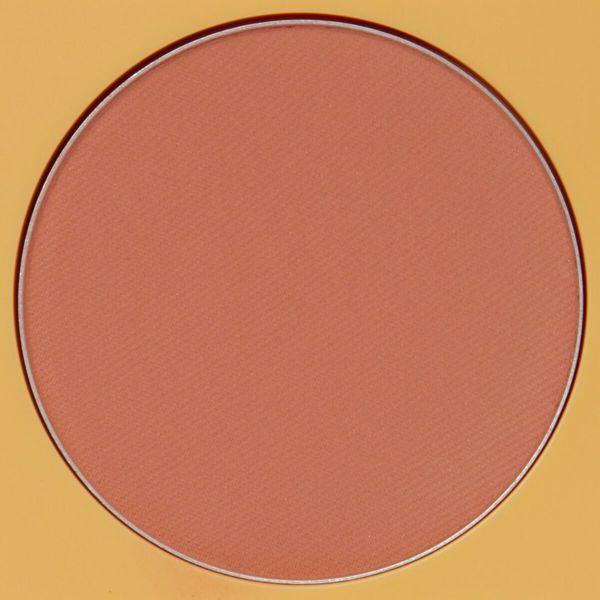 奥ゆかしいエレガントなカラーのMerzy(マージー)『ヘリテージ ブラッシャー BL2 テラコッタ』のご紹介に関する画像12