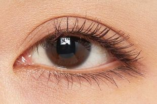 エクセル ロング&カラード ラッシュ LC03 プルーン の画像 3