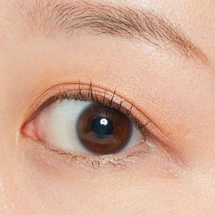VT cosmetics デイリーパレット 01 バタフライ の画像 3