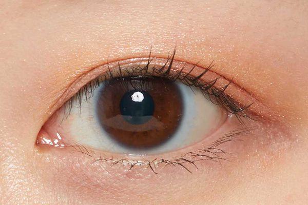 VT cosmeticsのデイリーパレット 01 バタフライに関する画像2