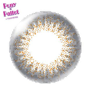 ポニーパレット ポニーパレット ワンデー 10枚/箱 (度なし) グレイ の画像 1