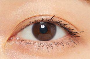 プランプピンク プランプマスカラ ロング&ボリューム ブラックネイビー 限定色 の画像 1