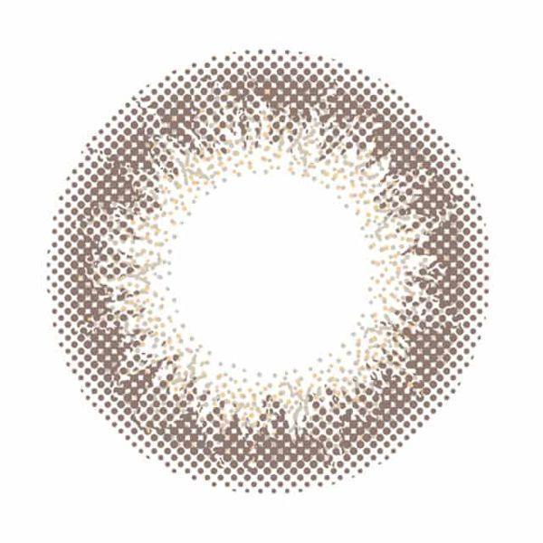 envieのアンヴィ ワンデー  10枚/箱 (度なし) シャンパングレイに関するメイン画像