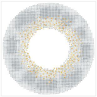 エンジェルカラー バンビシリーズワンデー 30枚/箱 (度なし) ヴィンテージグレー の画像 1
