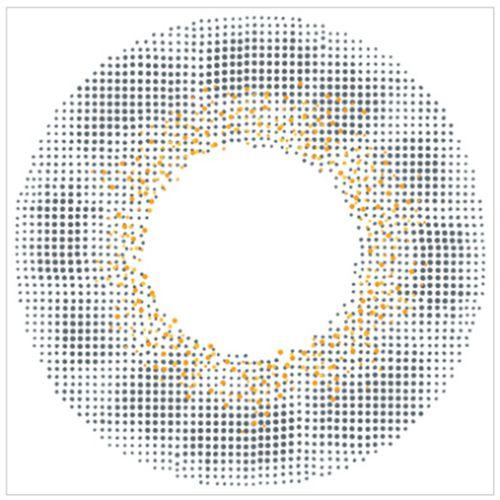 エンジェルカラーのバンビシリーズワンデー 30枚/箱 (度なし) ヴィンテージグレーに関する画像2