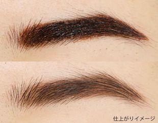 フジコ フジコ眉ティントSVR 01 ショコラブラウン 6g の画像 2