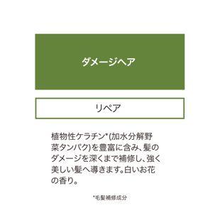 ラザルティーグ リペア&ナリッシュ トライアルセット 50ml×2+2ml×2 の画像 2