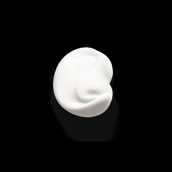 ビオデルマのサンシビオ リッチクリーム 40gに関する画像2