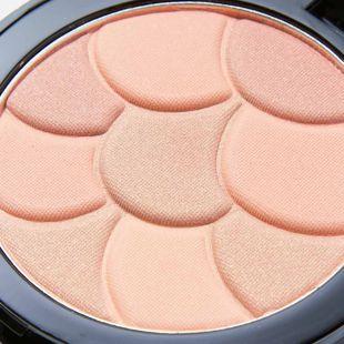 パルガントン チークデコ CD45 サンセットオレンジ  の画像 3