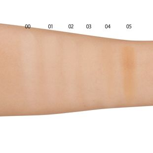 ケイト スキンカバーフィルターファンデーション 04 やや濃いめの肌 【レフィル】 13g SPF14 PA++ の画像 2