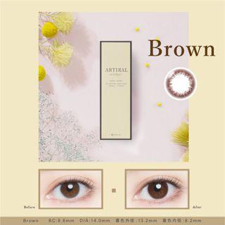 アーティラル アーティラル UV&モイスト ワンデー 10枚/箱 (度なし) ブラウンの画像