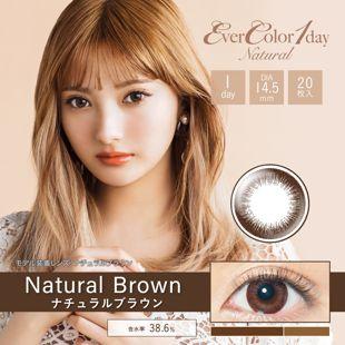 エバーカラー エバーカラー ワンデー ナチュラル 20枚/箱 (度なし) ナチュラルブラウン の画像 0