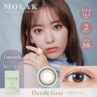 MOLAK MOLAK マンスリー 2枚/箱(度なし) ダズルグレー の画像 0