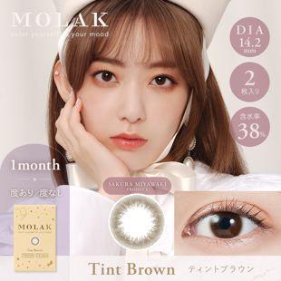 MOLAK MOLAK マンスリー 2枚/箱(度なし) ティントブラウン の画像 0