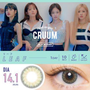 CRUUM クルーム ワンデー 10枚/箱(度なし) リーフ の画像 0