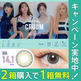 CRUUM クルーム ワンデー UV 10枚/箱(度なし) リーフの画像
