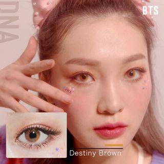 MTPR×BTS DNA ワンデー 10枚/箱 (度なし) Destiny Brownの画像
