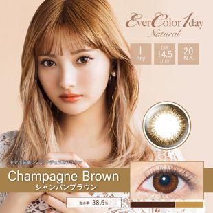 エバーカラー エバーカラー ワンデー ナチュラル 20枚/箱 (度なし) シャンパンブラウン の画像 0