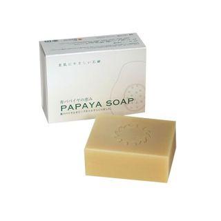 バイオ・ノーマライザー バイオ・ノーマライザー PAPAYA SOAP 100gの画像