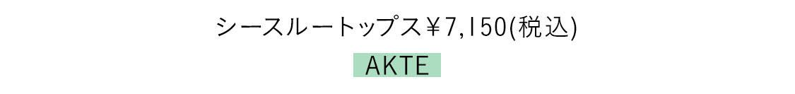 シースルートップス¥7150(税込)/AKTE